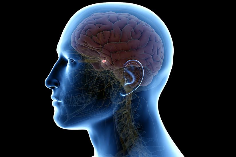 Adenom hipofizar: simptome, cauze, tratament, prevenţie