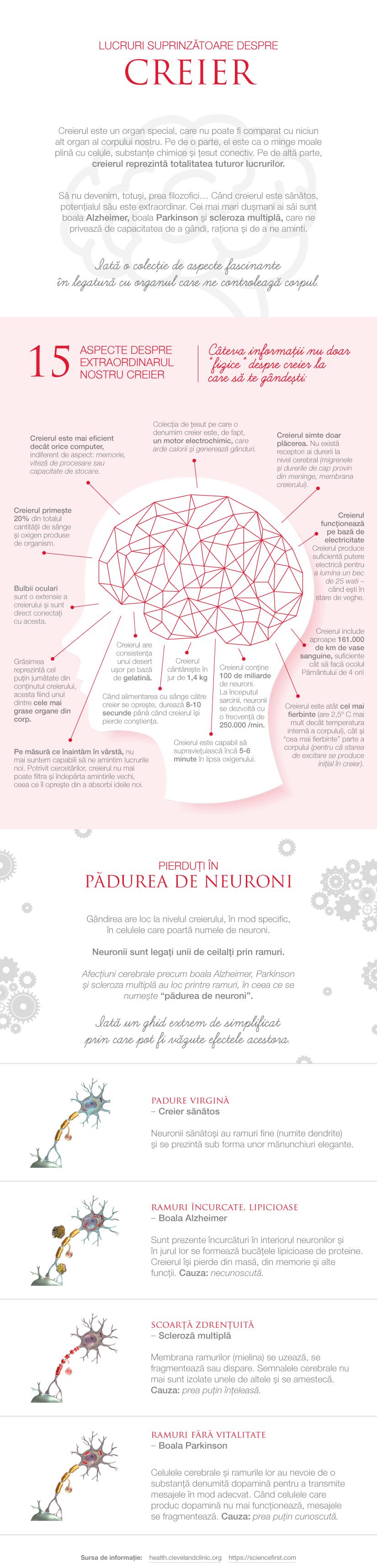 Ce nu stiai despre creier