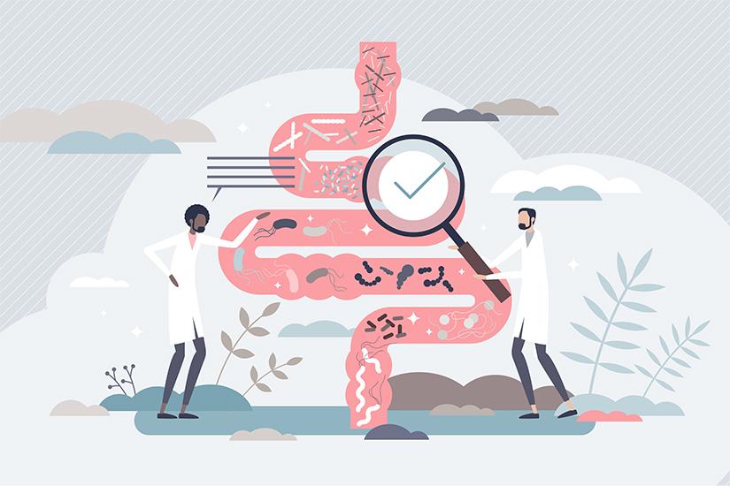 Pierderea în Greutate, Detoxifierea Corpului și Anti Îmbătrânirea sunt Conectate - feedme smart