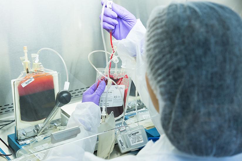 tratamentul cu celule stem în oftalmologie