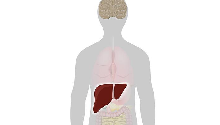 dureri articulare în hepatită punctul de pe cot doare