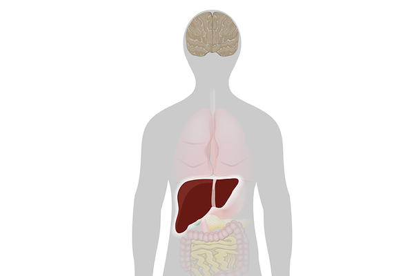 hepatita c și varicoză)